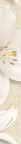Oasis бордюр вертикальний бежевий 7x50