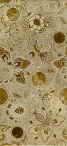 Emperador декор коричневий 23х50